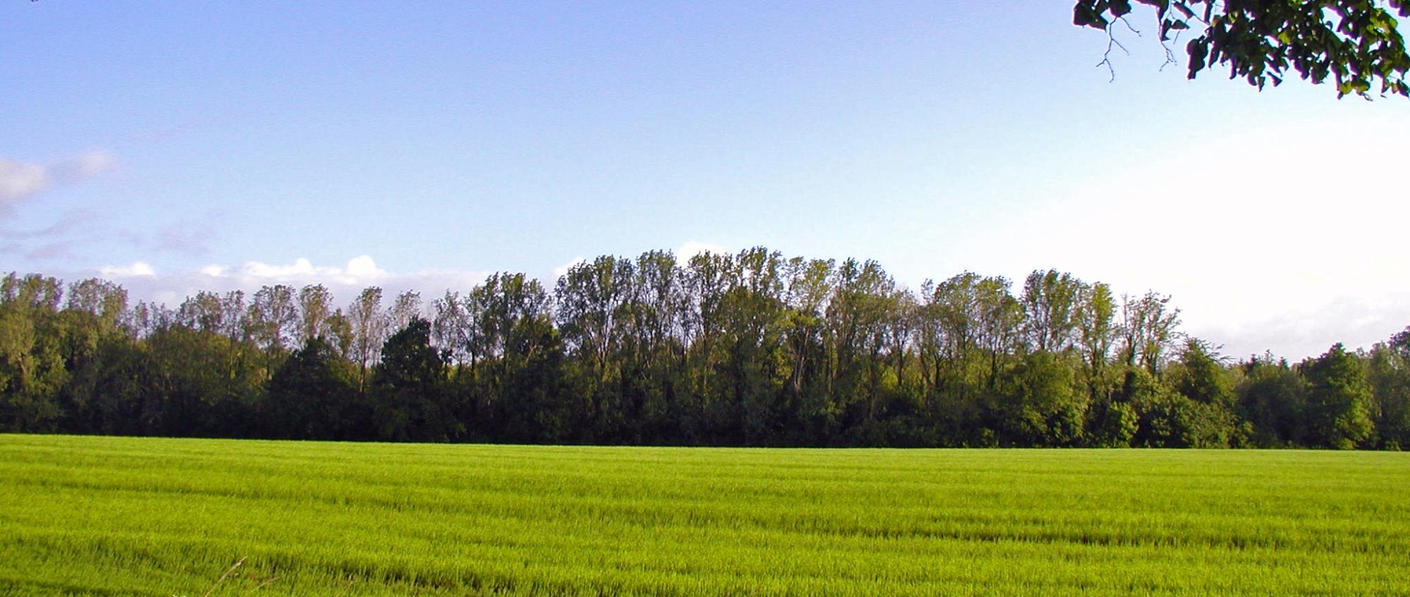 Parc naturel des Hauts-Pays