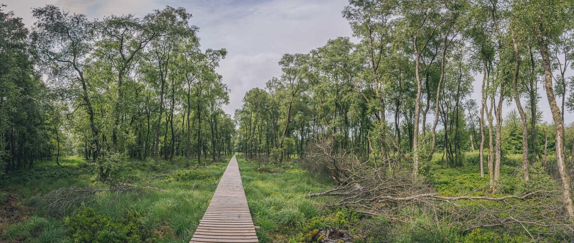 Parc naturel des deux Ourthes