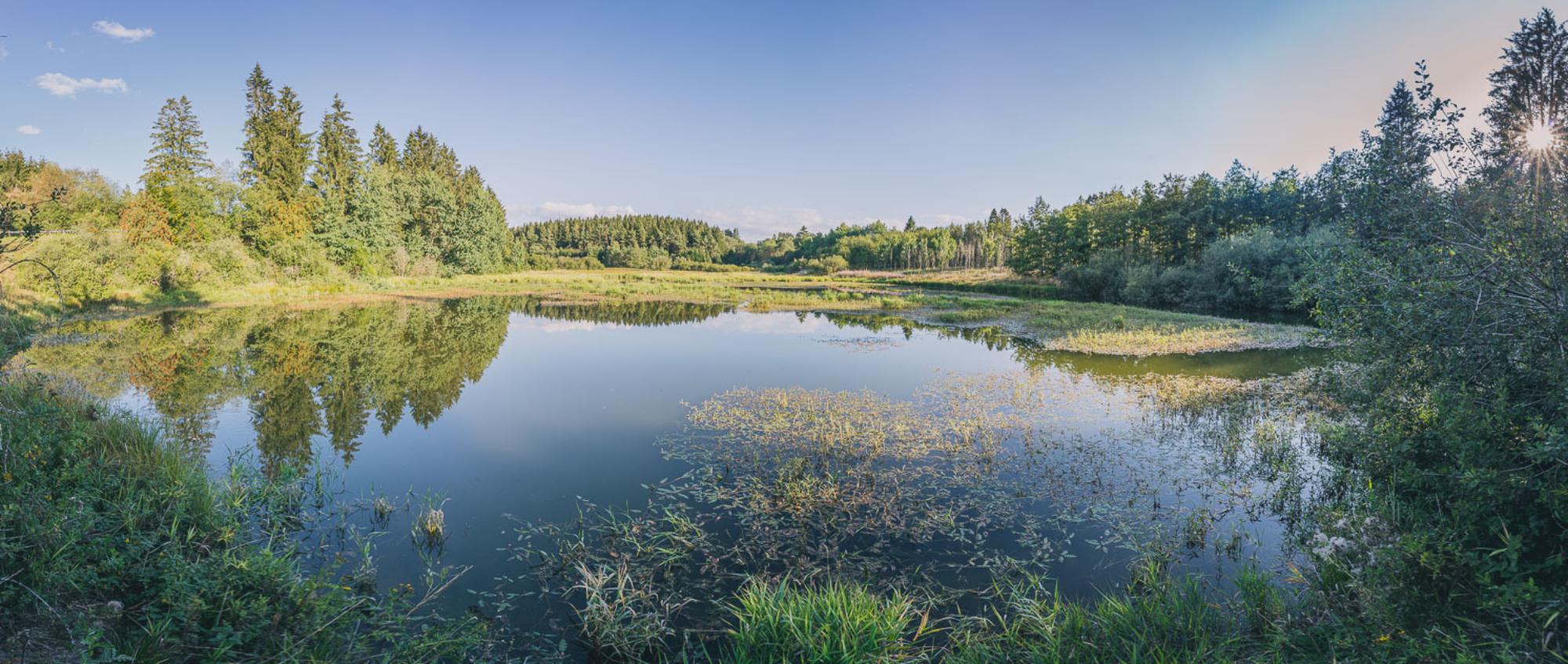 Parc naturel des Hautes Fagnes - Eifel